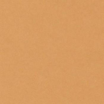 CARTULINA IRIS 50X65 185G CUERO