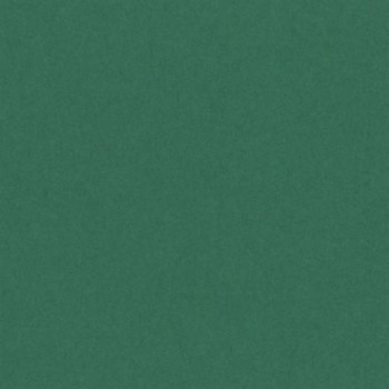 CARTULINA IRIS 50X65 185G VERDE ABETO
