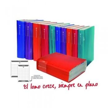 Carpeta 20 fundas gran capacidad A4 PP capacidad 500 hojas Cargo Office Box